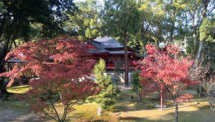 京都嵐山大覚寺